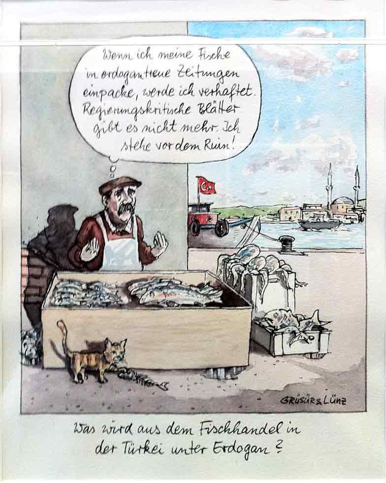 caricatura7-gruesuer-linz-erdogantreue-zeitungen